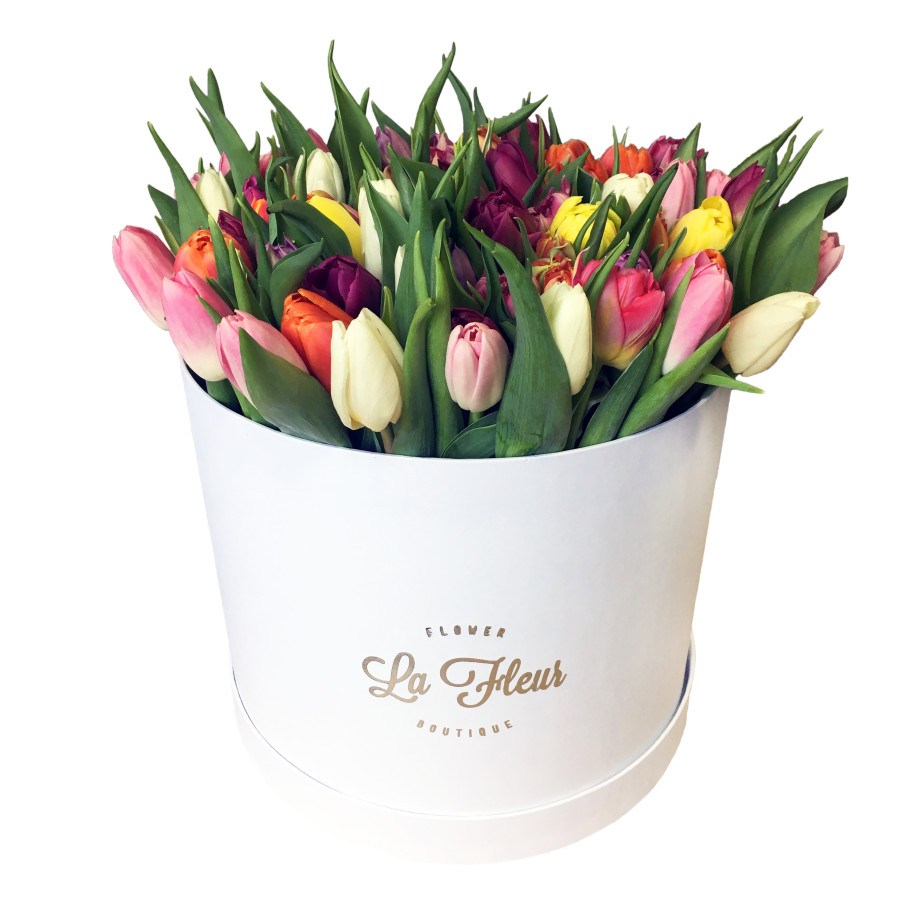 White Cilinder Tulips Mix XL 02